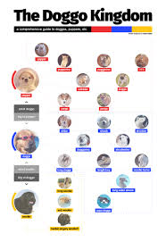 A Guide To Puppers Doggos And Woofers X Post R