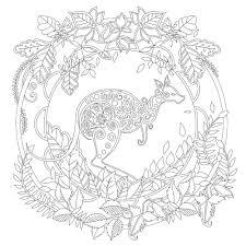 Elven Rừng Sách Tô Màu Dành Cho Người Lớn Mật Sách Tô Màu Phong Cách Giảm  Căng Thẳng Giết Thời Gian Antistress Tranh Tô Màu|null
