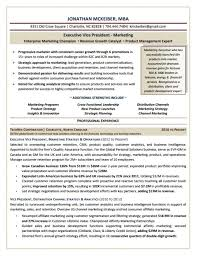 Marketing Executive Cv Example 11 Manager Resume 1 Portray Market