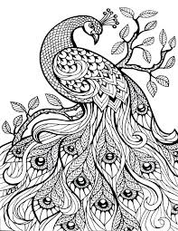 Free Printable Coloring Pages For Adults Only Luvsiteinfo