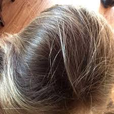 hair with henna indigo natural