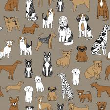 Puppy Wallpaper For Bedroom Puppy Wallpaper For Bedroom A Wallppapers Gallery