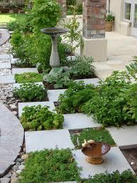 Kitchen Herb Garden Design Mini Kitchen Garden Ideas Cliff Kitchen
