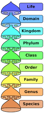 Kingdom Biology Wikipedia