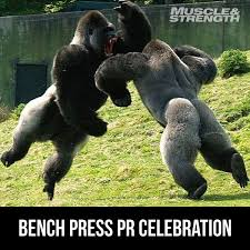 Image result for bench workout meme