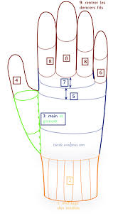 how to measure hand size for gloves ao with resolution 560 x 1024 px