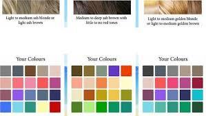 Colour Selection Based On Coat Colour The Myriad Of Choice