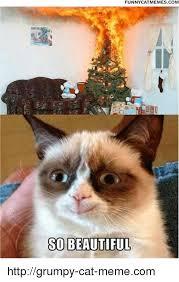 grumpy cat so beautiful. Beautiful Beautiful Memes  And Memescom FUNNY CAT MEMES COM SO BEAUTIFUL Http With Grumpy Cat So Beautiful MEME