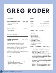 What A Good Resume Looks Like Good Resume Examples 100 Best Of Best Cv Examples 100 To Try 54