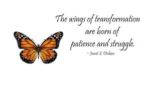 Butterfly Quotes Awesome Butterfly Quotes Part 48 WeNeedFun