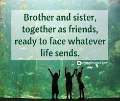 Sibling Love Quotes Delectable 48 Sweet And Loving Siblings Quotes SayingImages