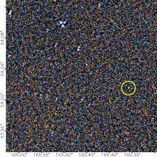 Gray And Wise Project Citizen Science Project Discovers New Brown Dwarf