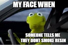 kermit meme my face when. Beautiful Kermit Kermit The Frog  MY FACE WHEN SOMEONE TELLS ME THEY DONT SMOKE RESIN  Image In Meme My Face When C
