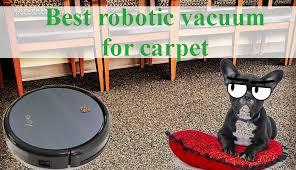 What is the Best Robot Vacuum Cleaner for Carpet?