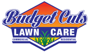 Budget Lawn Care Home Budget Cuts