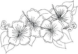 flower coloring book island coloring pages plants and s coloring book flower coloring pages best tropical