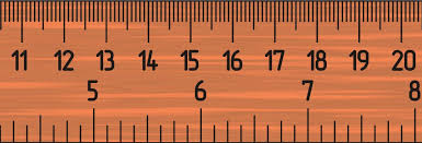 6 inch ruler actual size mix max nutty bag actual size ruler in inches
