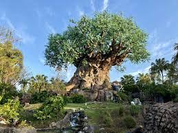 Disney Parks Withdrawal Disney+ Movie ...