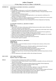 Technical Architect Resume Sample Salesforce Technical Architect Resume Samples Velvet Jobs 4