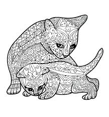 free printable kitten coloring pages page color cat and cute ki
