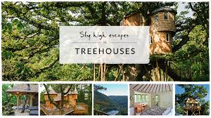 Tree House Holidays In Uk