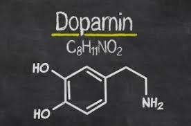 in welchen lebensmitteln kommt dopamin vor