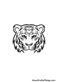 tiger face drawing how to draw a