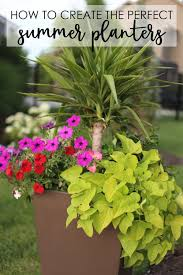 tutorial how to plant flowers in a pot