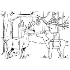 Small Picture Top 10 Free Printable Wildlife Hunting Coloring Pages Online