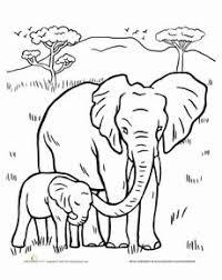 Color The Elephant Family Elephants Elephant Coloring Page