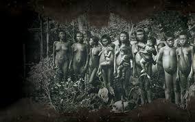 Resultado de imagem para Massacre de índios pela ditadura militar