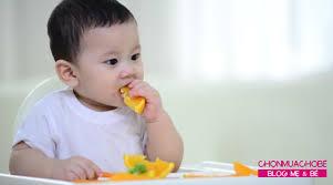 1 - [Review] 33+ thực đơn ăn dặm BLW cho bé 9 tháng tuổi giàu dinh dưỡng