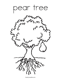 Small Picture pear tree Coloring Page Twisty Noodle