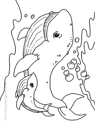 Ocean Animals Coloring Pages For Adults Cute Baby Sea Animal Cartoon