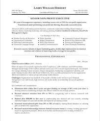 Non Profit Resume Sample Resume