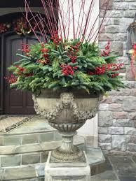 How To Plant Large Winter Containers  Amateur GardeningContainer Garden Ideas For Winter