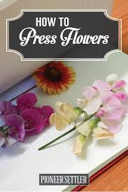 How To Press Flowers For Perfectly Dried Petals