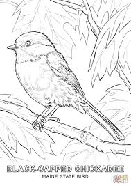 Coloring Pages : Nice Maine Coloring Pages Cllobst Maine Coloring ...