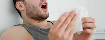All About Allergies | Berkeley Wellness