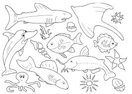free printable fish coloring pages top free printable fish coloring pages are fun creation but they also help free printable clown fish coloring pages