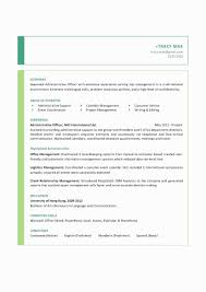 Project Management Status Report Example Awesome Resume