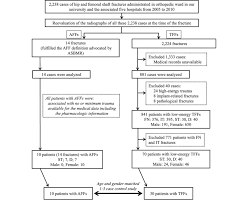 Circulation Chart For Fracture Flowchart Of The Study Population Fn Femoral Neck Fracture