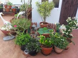 Small Picture Small Garden Design Ideas India Sixprit Decorps