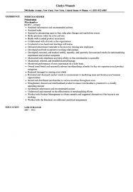 Merchandiser Resume Sample Velvet Jobs Garment Stand Sevte