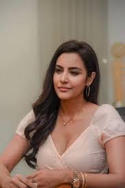 Priya Anand Stills - LKG Pressmeet | Actress priya, South indian actress  hot, Bollywood actress hot