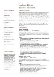 Judicial Assistant Sample Resume. Free Fashion Cover Letter Model
