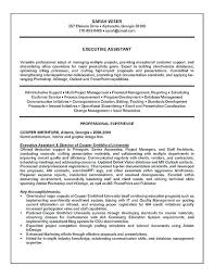Sample Career Summary For Resume Executive Assistant Resume Example ...