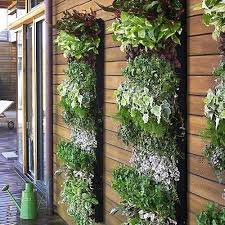 Small Picture 22 Space Saving Ideas for Green Walls and Vertical Garden Design
