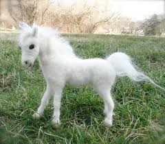 white baby horses playing. Modren Playing White Baby Horses Playing  Photo7 Intended Baby Horses Playing E