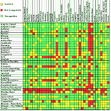 Saltwater Fish Compatibility Chart How To Choose Saltwater Fish That Will Get Along In Your